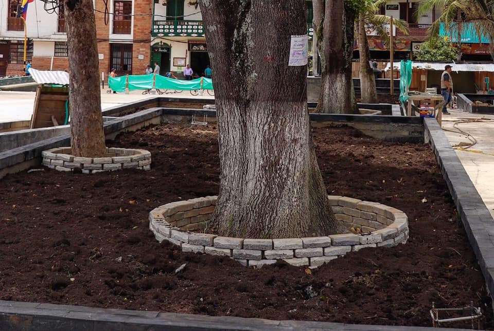Un bosque qué proteger en medio del parque principal de La Ceja