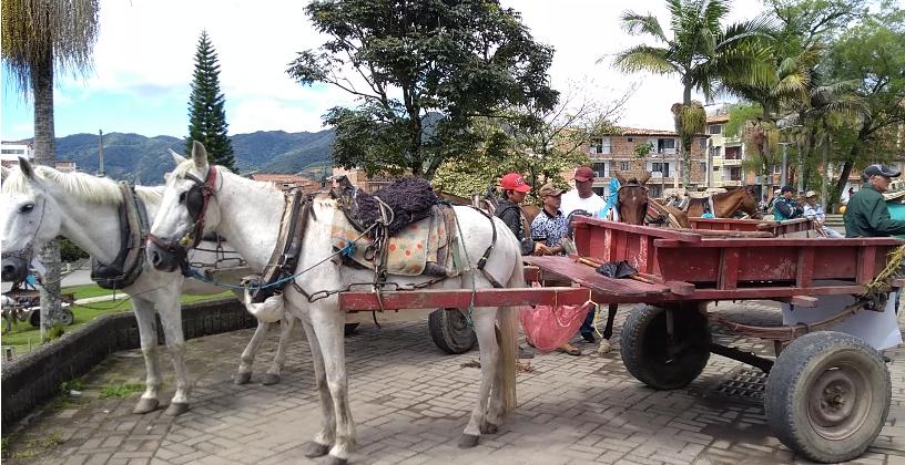 21 cocheros entregaron vehículos de tracción animal en El Carmen