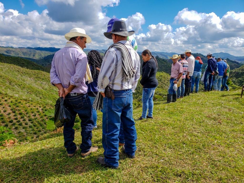 Gobernación dispone de 487.500 millones de pesos para productores agropecuarios