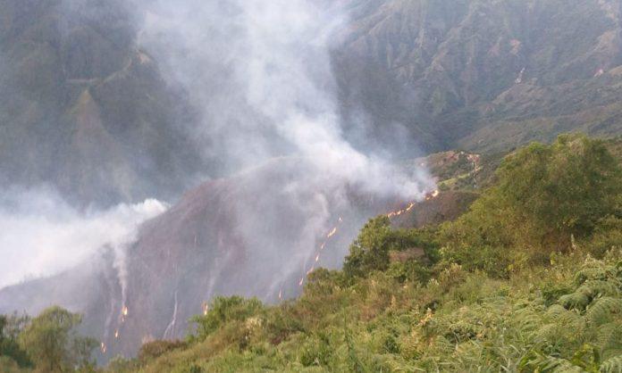 Declaran alerta naranja en Abejorral por incendio forestal.