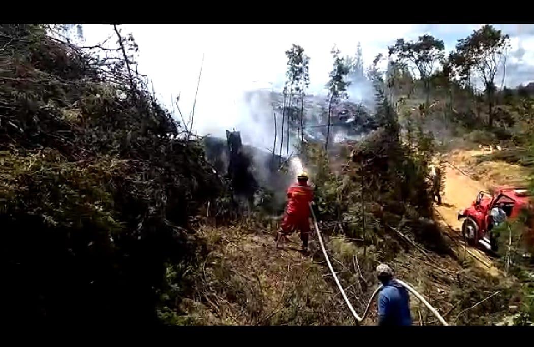 Incendio en Guarne al parecer por tala de árboles y quema de material residual