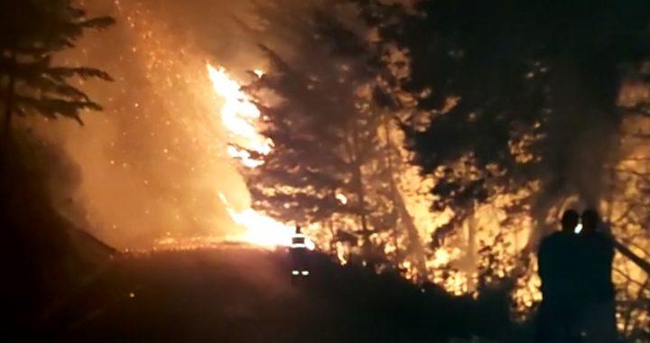 Incendio forestal en Abejorral aunque está controlado, persisten las llamas