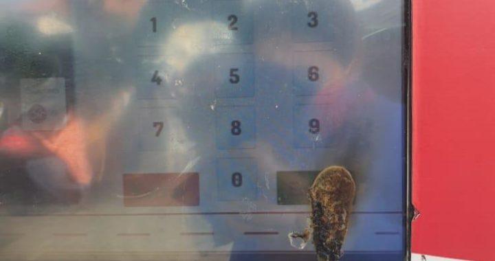 ¡Qué descaro! Por actos vandálicos suspenden servicio en una de las estaciones de Bicirio en Rionegro