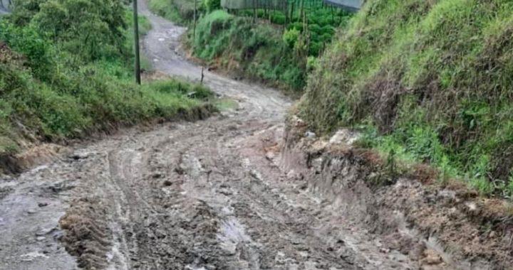Lluvias de la últimas horas provocan deslizamientos en El Carmen de Viboral.