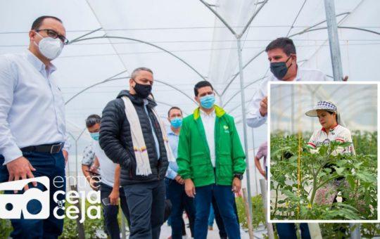 Se inauguró en El Carmen, uno de los invernaderos más modernos del país