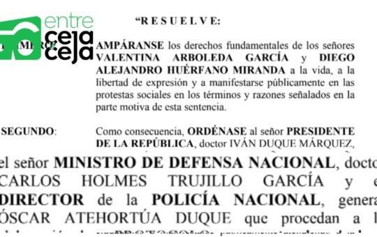 Revuelo Nacional: Fallo proferido por Tribunal estaría lleno de errores.