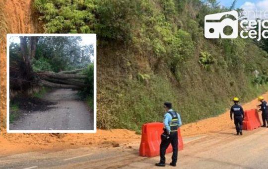Árboles caídos, aludes de tierra e inundaciones, afectaciones por las lluvias.