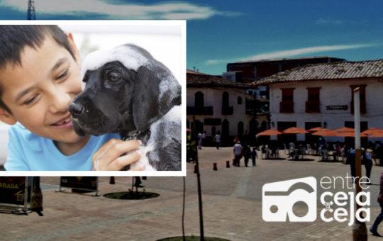 El Carmen realizará jornada  de sensibilización de amor por los animales.