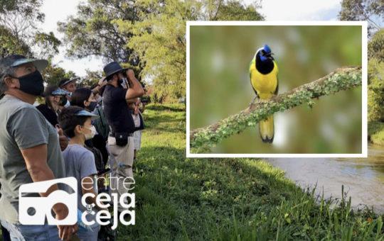 """""""Rionegro entre aves"""" estrategia para promover la biodiversidad y conservación natural""""."""