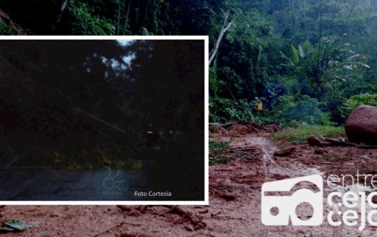San Luis: persisten deslizamientos en autopista Med-Bog.