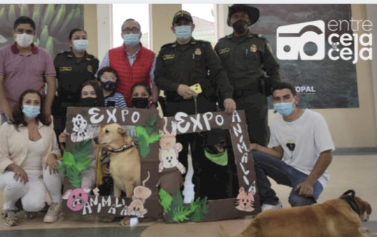 Expoanimalia 2021: más de 1000 personas participaron de la prueba piloto en El Carmen.