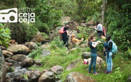 Caminantes hallan el cuerpo sin vida de una mujer en la Cascada del Diablo en Guarne.